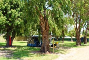Bathers Paradise Caravan Park Esperance Grassy Tent Sites